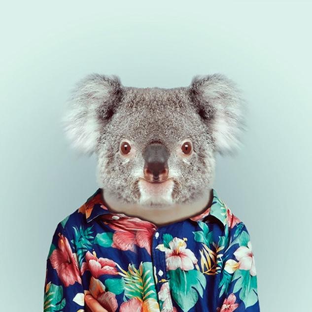 Fashion-Zoo-Animals25