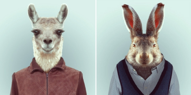 Fashion-Zoo-Animals3